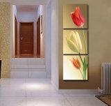يشكّل فنية طبعة صورة جدار فنية منزل توليب زخرفيّة يدهن 3 [بيس كنفس] فنّ شحن حرّة [مك-188]