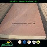 Madera contrachapada comercial de la base del álamo para el producto de los muebles del alto grado