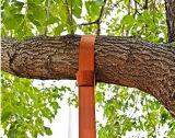 Draagt de Op zwaar werk berekende Hangende Riem van de Schommeling van de Uitrusting van de Schommeling Hangende