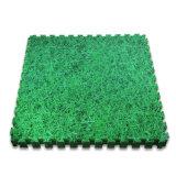 Étage de verrouillage de couvre-tapis de créateur de mousse à niveau élevé d'EVA