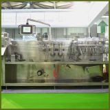 Heiße Verkaufs-Käse-Vakuumverpackungsmaschine