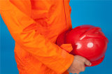 Indumento di funzionamento poco costoso di sicurezza lunga del manicotto del poliestere 35%Cotton di 65% (BLY1022)