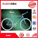 26 '' bici fisse dell'attrezzo di singola velocità, bicicletta fissa su ordine dell'attrezzo del peso leggero 700c, bici completa dell'attrezzo fisso bianco dell'azzurro 700c