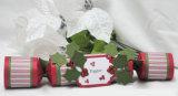 Galleta de la Navidad para el regalo HS-C005 de la Navidad
