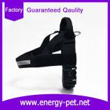 アメリカ犬のための熱い販売法の馬具の工場供給ペット製品