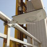 Mur approuvé de la CE et lumières solaires de chemin de jardin montées par Pôle