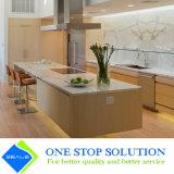 Armadi da cucina dorati di lusso di rivestimento dell'impiallacciatura di mobilia domestica (ZY 1077)