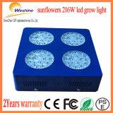 216W 해바라기 LED는 플랜트 과일 야채를 위해 가볍게 증가한다
