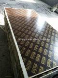 A madeira compensada enfrentada película faz o material de construção