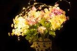 De Lichten van het Koord van de LEIDENE Draad van het Koper voor Openlucht Lichte Decoratie