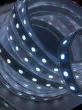 CE contabilità elettromagnetica LVD RoHS due anni di garanzia, luce di striscia del LED RGB+W