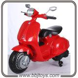 Niños moto-Bj8820