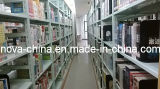 신성 근수에서 가벼운 의무 도서관 선반설치