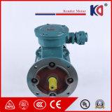 Электрический взрывозащищенный мотор AC 400V/415V/440V индукции