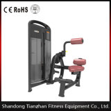体操Strength EquipmentかWholesale Price Fitness Equipment/Back Extension Tz4006