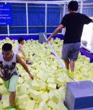 거품 구덩이, 피구, 바구니 공을%s 가진 올림픽 표준 건물 실내 Trampoline
