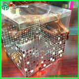 Plastic Pet Clear Verpakking Box