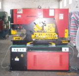 Presse de cisailles combinée hydraulique (250ton)