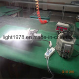 9W a 250W Solar Lamp Light Factory con IP67 Rating