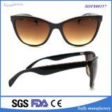 Neue Art Soem-Katzenauge-Plastiksonnenbrillen mit PC Rahmen
