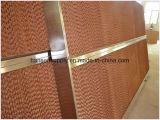 Pista de la refrigeración por evaporación con el marco de acero inoxidable para la granja avícola/el invernadero