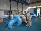 Гидроэлектроэнергия генератора турбины Hydroturbine/Фрэнсис гидро (вода)