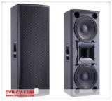 Altavoz de las multimedias \ caja del altavoz del Karaoke altavoz sano audio pasivo del sistema de sonido \ KTV de 12 pulgadas