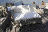 Mobilia sintetica del rattan del nuovo disegni sofà esterno di lusso del rattan di 2016