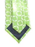 Салатовый галстук шелка человека