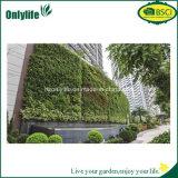 La parete vivente riutilizzabile applicata economica intasca la piantatrice