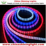 Luces del día de fiesta de la decoración LED de la Navidad de la buena calidad