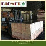 La película de la construcción del precio bajo hizo frente a la madera contrachapada para el mercado de Medio Oriente