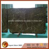 Laje de mármore importada de Brown da floresta húmida