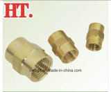 Montaggio filettato femmina d'ottone senza piombo del NPT dell'accoppiamento del tubo (FIP x FIP)