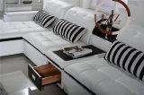 [ل] بسيطة شكل جلد أريكة