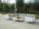 中国の家具の藤のソファーはTeakwood表とセットした