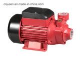 Pompa delle acque pulite del getto del ferro del fornitore della Cina