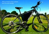 Kit elettrico di conversione della bici del grafico a torta astuto approvato del CE con il regolatore programmabile incorporato 24V 36V 48V 200W 300W 400W