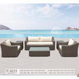 Il sofà esterno del rattan della mobilia ha impostato per il giardino con il blocco per grafici di alluminio
