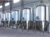Конический ферментер (ACE-FJG-Z1)