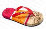 Тапочка Flop Flip 2016 ботинок лета для женщин (RF16187)