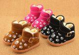 2016 zapatos encantadores de los niños del nuevo estilo (TX 09)