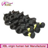 Tissage de trame de cheveux humains de cheveux brésiliens de Vierge
