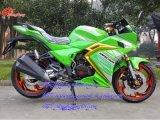 Fronte di taglio di Fox che corre motociclo, motociclo di sport