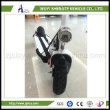 48V低価格の新式の2つの車輪Eのバランスのスクーター