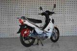 JinchengのオートバイモデルJc110-19Vカブス