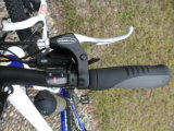 高速の36V 250W MTBの電気バイク