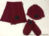 De nieuwe 100% AcrylJonge geitjes Gebreide Reeks van Scarf&Hat&Gloves van de Winter (PTKH15002)