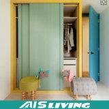 O branco moderno retira a caminhada da melamina no armário do Wardrobe (AIS-W020)