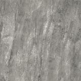 Azulejo de cerámica superficial del suelo y de la pared de Matt Decotative del buen diseño